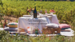 LES INSTANTS VINS: 2 août : Fête des vignerons à La Garde-Adhémar