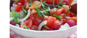 Salsa de tomates à la coriandre