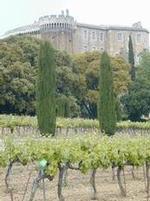 jardin des vignes suzienne
